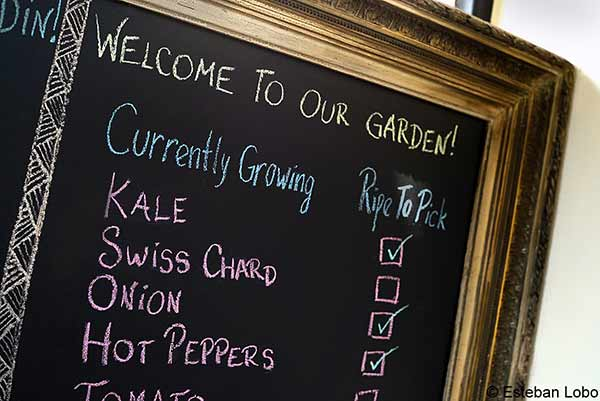 Ellie's Garden Menu Vegetables Growing Poetry Building Recoleta Buenos Aires