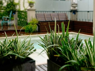 Luxury Rental Apartments Buenos Aires Pool Chairs Plants Deck Raining Day